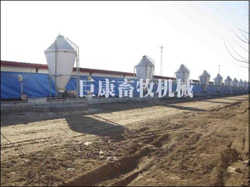 河北裕丰京安养殖有限公司必威精装版官网下载 (4)